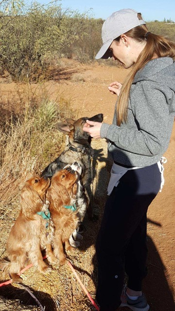 Dog Training Testimonial